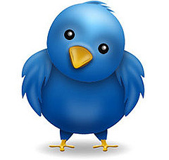 Twitter bird by Travelin
